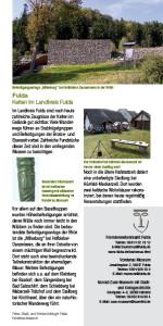 Fulda-pdf