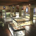 ©Fotos: Archäologisches Museum Kelheim